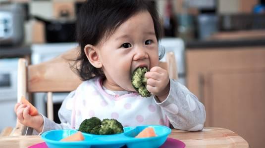 Tips Mengatasi Anak yang Tidak Mau Makan Sayur