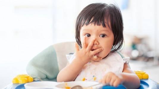 Review Slow Cooker Digital Baby Safe LB 007