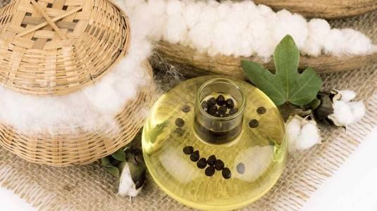 Manfaat Bahan Alami Cottonseed Oil untuk Kulit Bayi