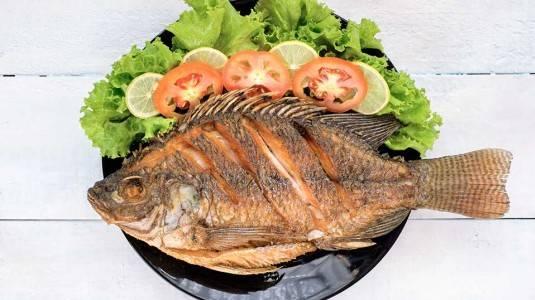 Hindari Makan Ikan Berlebihan saat Menyusui