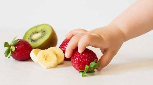 Penuhi Nutrisi Anak 2 Tahun dengan Camilan Sehat Berikut Ini!