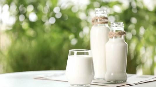 Perbandingan UHT Milk dan Fresh Milk