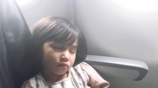 Tips Happy Terbang Bersama Toddler