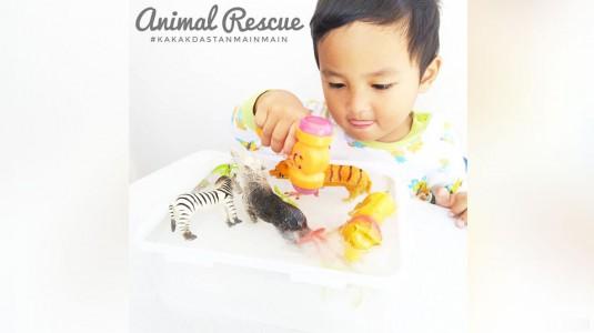 Permainan Sederhana untuk si Kecil - Animal Rescue