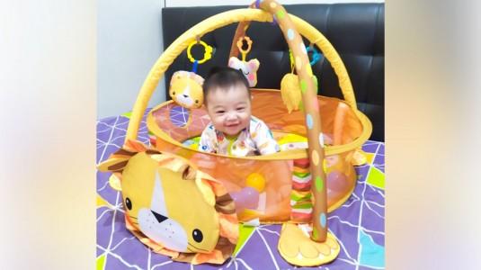 Triple Fun Ball Pit Bebe Smart Gratis, Terima Kasih Babyologist!
