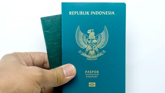 Langkah Mudah Mengurus Paspor Bayi