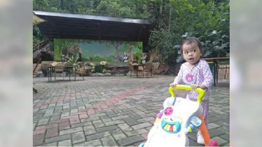Cara Stimulasi Agar Anak Cepat Berjalan