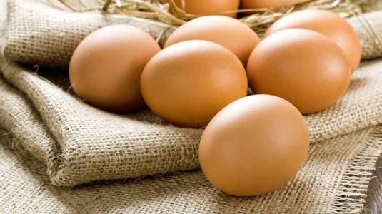 Banyak Makan Telur Bisa Bisulan? Mitos Atau Fakta?