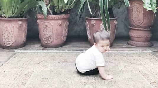 Pertolongan Pertama Ketika Bayi Jatuh