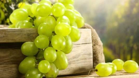 Manfaat Anggur untuk Ibu Hamil yang Jarang Diketahui