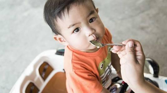 Berapa Kali Sehari Sebaiknya Anak Makan?