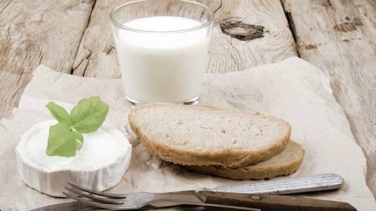 Manfaat Susu Kambing Untuk Ibu Hamil