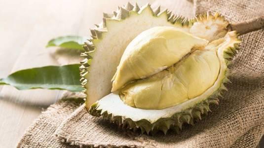 Manfaat Durian Untuk Ibu Hamil