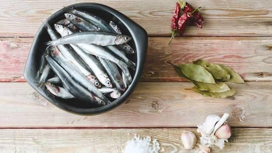 Apa Manfaat Ikan Teri untuk Ibu Hamil?