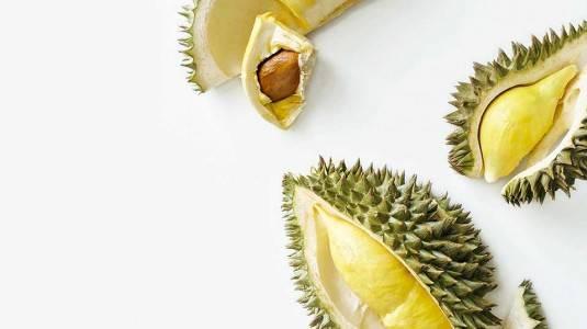 Mitos atau Fakta : Durian Tingkatkan Risiko Penyakit Jantung Bawaan