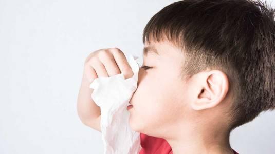 Anak Alergi Berisiko Terkena Penyakit Jantung: Mitos atau Fakta?