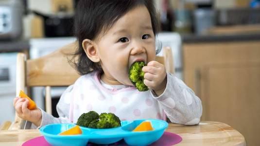 BLW atau Responsive Feeding?