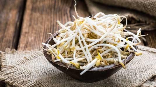 Makanan yang Mengandung Asam Folat Tinggi untuk Menunjang Promil