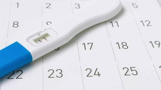 Bagaimana Cara Mengetahui Suatu Kehamilan?