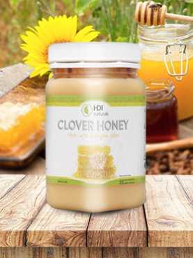 Clover Honey HDI 1/2 Kg