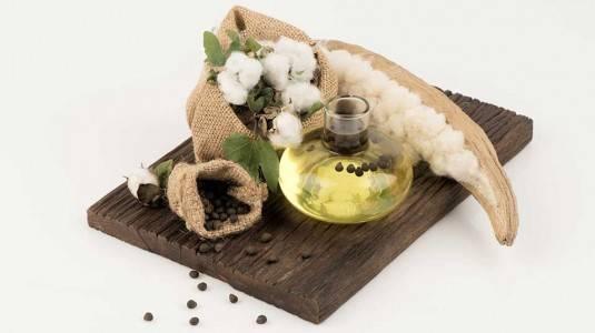 Mengenal Cottonseed Oil dan Manfaatnya untuk Kulit