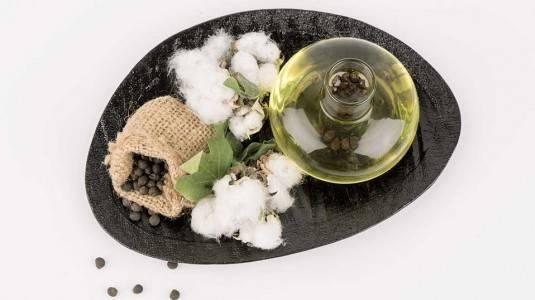Cottonseed Oil dan Berbagai Manfaatnya