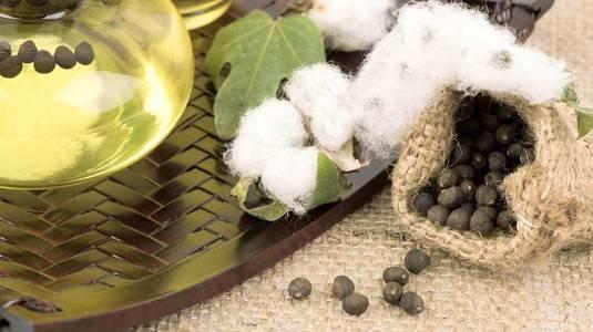 Kandungan Cottonseed Oil pada Produk Naif untuk Kulit Sehat Bayiku