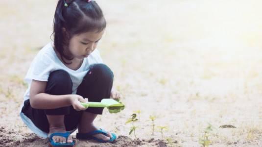Tertarik Menyekolahkan Anak di Sekolah Alam? Ini Plus Minusnya!