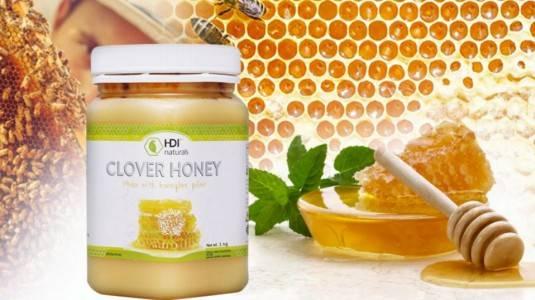 Atasi Batuk Pilek Dengan Clover Honey