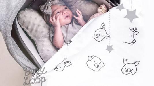 Tips Agar Anak Tidak Rewel Ketika Diajak Mudik by Baby Loop