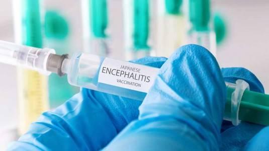 Pentingkah Vaksin Japanese Encephalitis (JE)?