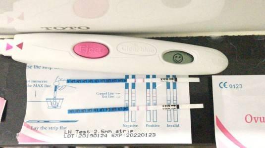 Pengalaman Pengunaan Testpack Kesuburan (Ovulasi)