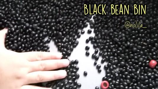 Ide Bermain: Black Bean Bin