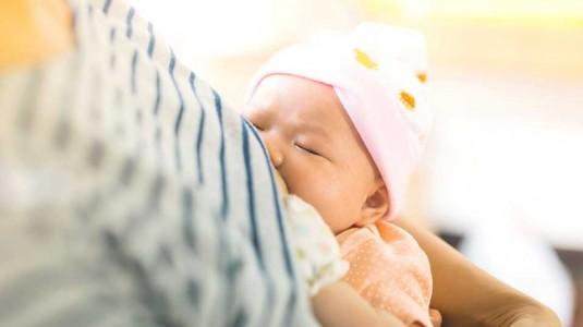 Apakah Menyusui Dapat Menurunkan Berat Badan Moms?