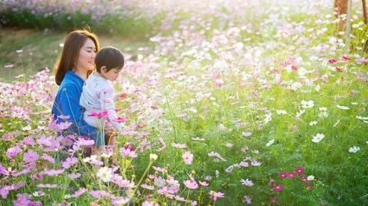 3 Kegiatan Interaktif yang Cocok untuk Balita Usia 20 Bulan