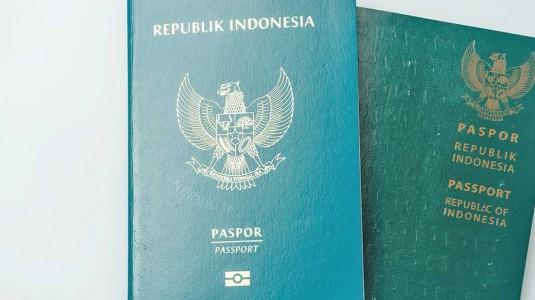 Buat Passport Bayi secara Online, Gimana Caranya?