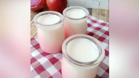 Pudding White Pink