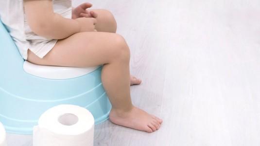 Toilet Training? Lakukan Jika si Kecil Sudah Siap ya Moms!