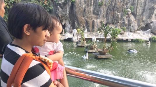 Belajar Mengenal Hewan di Kebun Binatang Ragunan