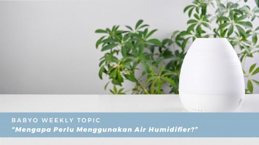 Mengapa Perlu Menggunakan Air Humidifier?