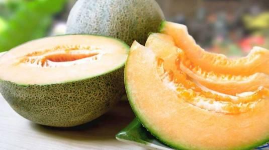 Bahaya dan Manfaat Melon Bagi Ibu Hamil