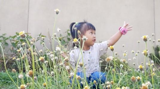 Minyak Telon dengan Segudang Manfaatnya untuk si Kecil