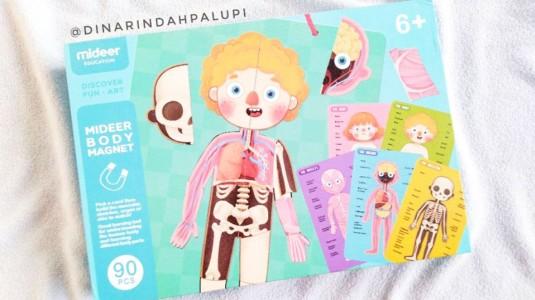 Review Mideer Body Magnet: Cara Asik Mengenalkan Anggota Tubuh pada si Kecil