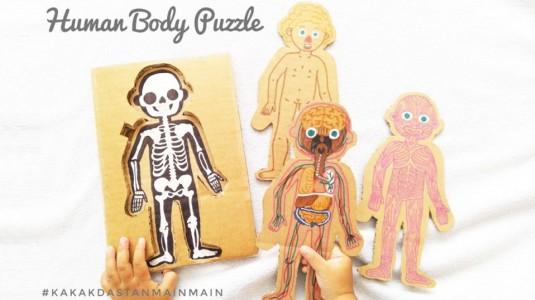 Ide Bermain Anak - Human Body Puzzle