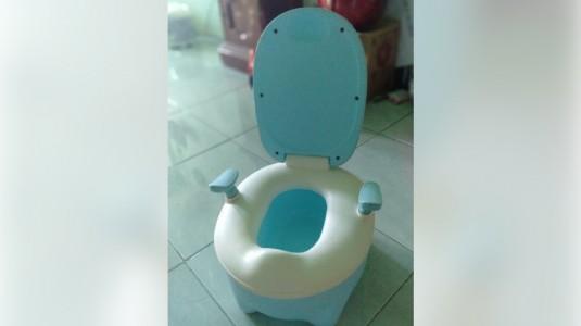 Tips Toilet Training Heidy