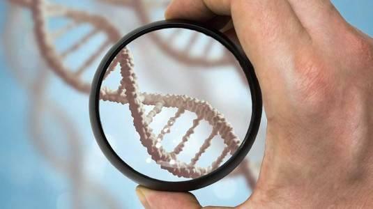 Alasan Penting Mengapa Jumlah Kromosom Harus Pas Saat Hamil