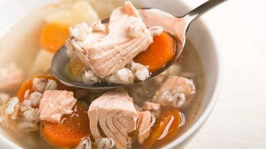 Sup Salmon