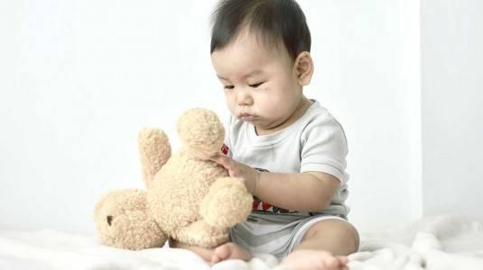 Mainan Bayi 0-6 Bulan