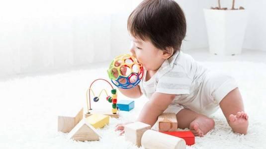 Mainan Bayi 12-18 Bulan