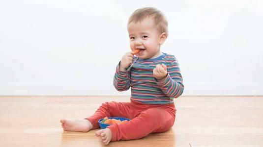 Pengalaman Menerapkan Metode Baby Led Weaning